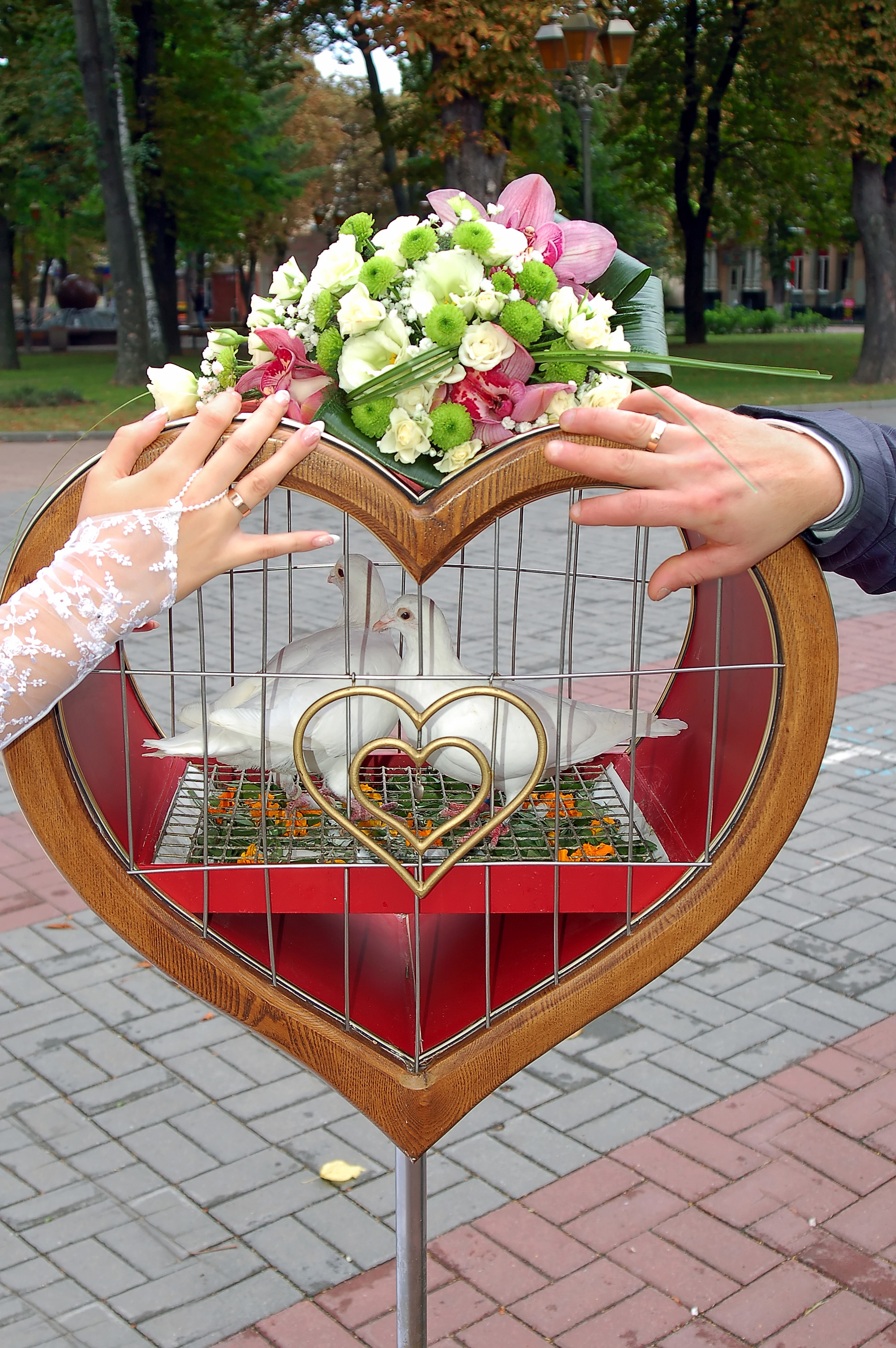 hands of groom and fiancee on cage with pigeons